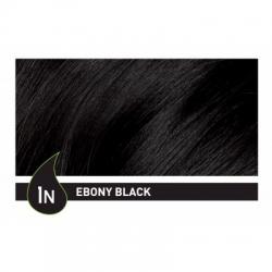NATURTINT® ilgalaikiai plaukų dažai be amoniako, EBONY BLACK 1N (165 ml)