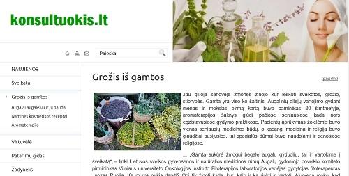 www.konsultuokis.lt